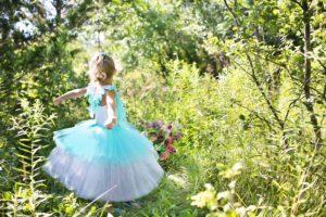 princess-869722_1920